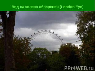 Вид на колесо обозрения (London Eye)