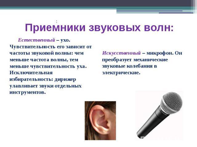 Приемники звуковых волн: Естественный – ухо. Чувствительность его зависит от частоты звуковой волны: чем меньше частота волны, тем меньше чувствительность уха. Исключительная избирательность: дирижер улавливает звуки отдельных инструментов.Искусстве…
