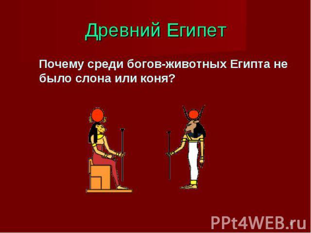 Древний Египет Почему среди богов-животных Египта не было слона или коня?