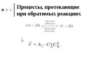 Процессы, протекающие при обратимых реакциях