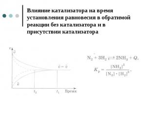 Влияние катализатора на время установления равновесия в обратимой реакции без ка