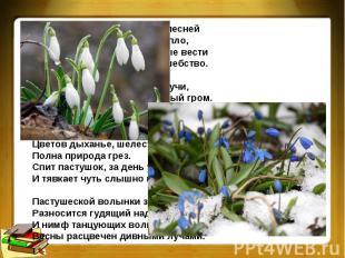 Весна грядет! И радостною песнейПолна природа. Солнце и тепло,Журчат ручьи. И пр