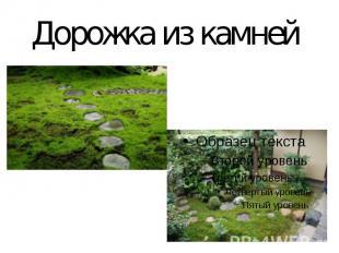 Дорожка из камней