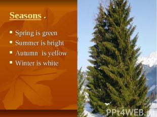 Seasons . Spring is greenSummer is brightAutumn is yellowWinter is white