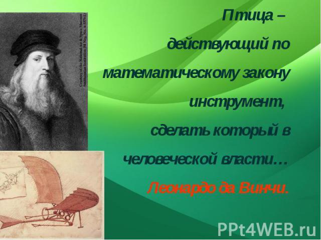 Птица – действующий по математическому закону инструмент, сделать который в человеческой власти…Леонардо да Винчи.