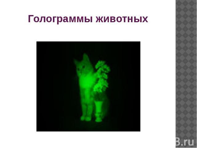 Голограммы животных