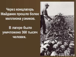 Через концлагерь Майданек прошло более миллиона узников. В лагере было уничтожен
