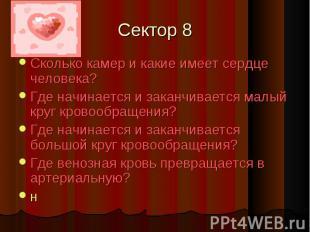 Сектор 8 Сколько камер и какие имеет сердце человека?Где начинается и заканчивае