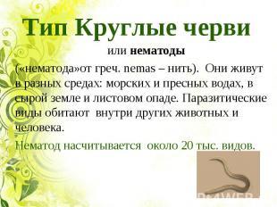 Тип Круглые черви илинематоды(«нематода»от греч. nemas – нить). Они живут в р