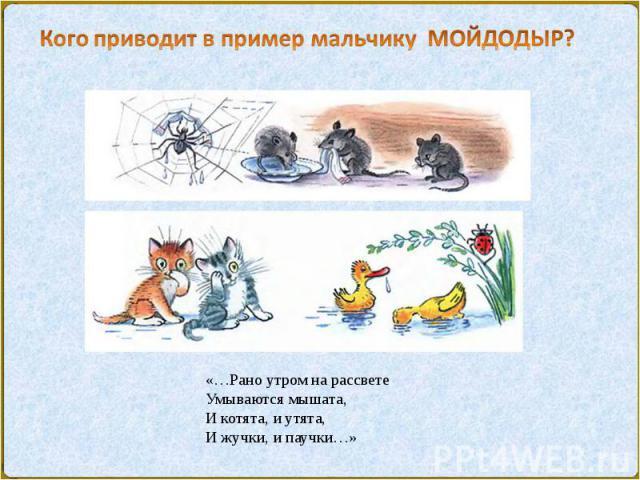 «…Рано утром на рассветеУмываются мышата,И котята, и утята,И жучки, и паучки…»