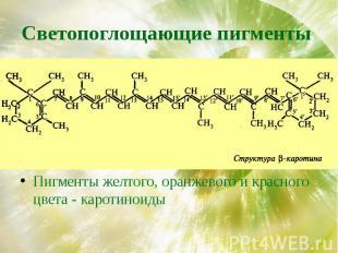 Светопоглощающие пигменты Пигменты желтого, оранжевого и красного цвета - кароти