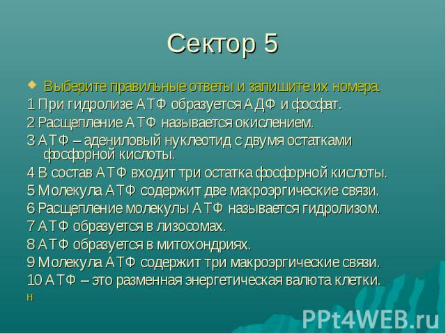 Сектор 5 Выберите правильные ответы и запишите их номера.1 При гидролизе АТФ образуется АДФ и фосфат.2 Расщепление АТФ называется окислением.3 АТФ – адениловый нуклеотид с двумя остатками фосфорной кислоты.4 В состав АТФ входит три остатка фосфорной…
