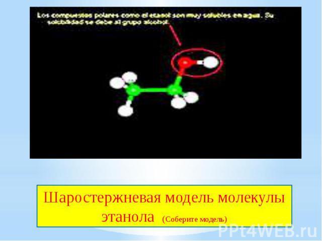 Шаростержневая модель молекулы этанола (Соберите модель)