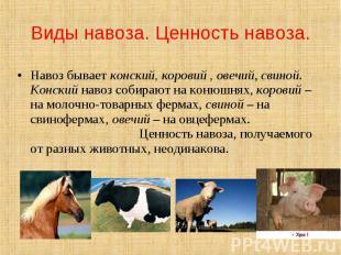 Виды навоза. Ценность навоза. Навоз бывает конский, коровий , овечий, свиной. Ко