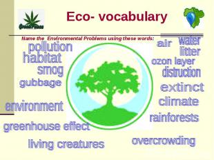 Eco- vocabulary Name the Environmental Problems using these words: