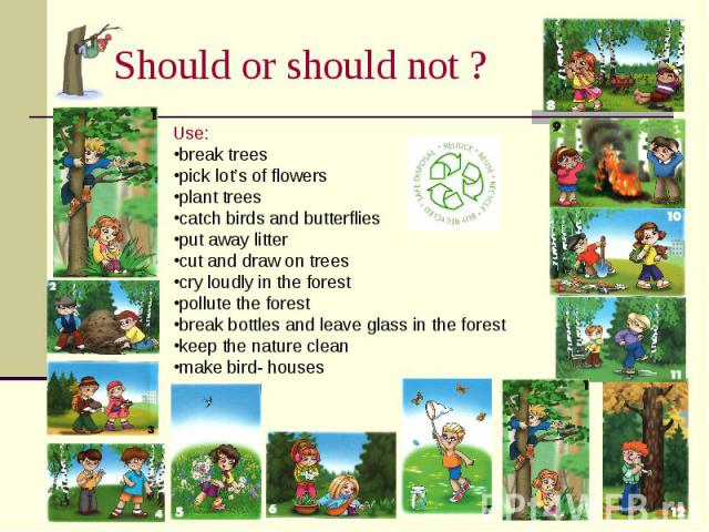 Should or should not ? Use:break treespick lot's of flowersplant treescatch birds and butterfliesput away littercut and draw on treescry loudly in the forestpollute the forestbreak bottles and leave glass in the forestkeep the nature cleanmake bird-…