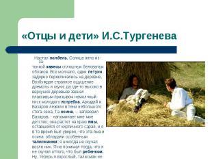 «Отцы и дети» И.С.Тургенева  Настал полдень. Солнце жгло из-за тонкой завесы сп