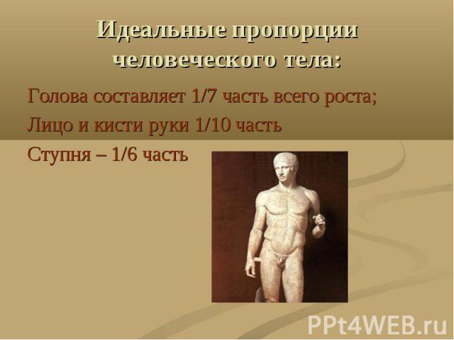 Идеальные пропорции человеческого тела: Голова составляет 1/7 часть всего роста;Лицо и кисти руки 1/10 частьСтупня – 1/6 часть