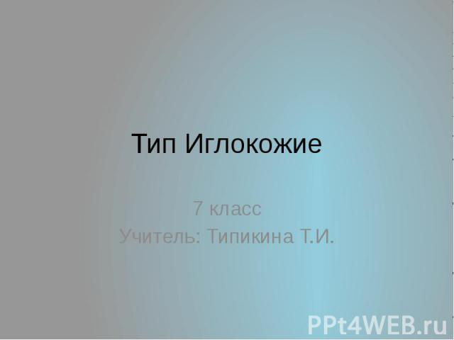 Тип Иглокожие 7 классУчитель: Типикина Т.И.