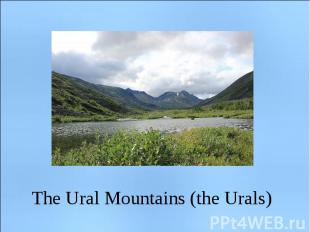 The Ural Mountains (the Urals)