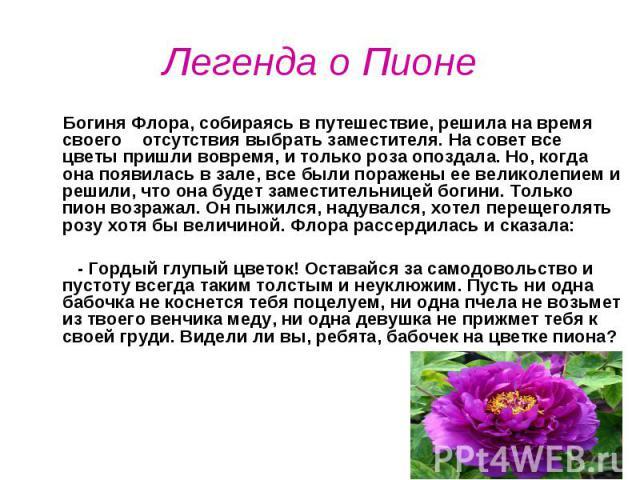 Легенда о Пионе Богиня Флора, собираясь в путешествие, решила на время своего отсутствия выбрать заместителя. На совет все цветы пришли вовремя, и только роза опоздала. Но, когда она появилась в зале, все были поражены ее великолепием и решили, что …