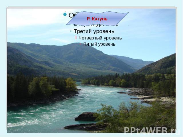 Р. Катунь