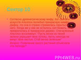 Сектор 10 Согласно древнегреческому мифу, бог света и искусств Аполлон полюбил п
