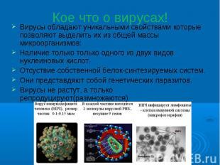 Кое что о вирусах! Вирусы обладают уникальными свойствами которые позволяют выде
