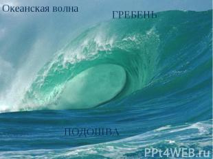 Океанская волна ГРЕБЕНЬПОДОШВА