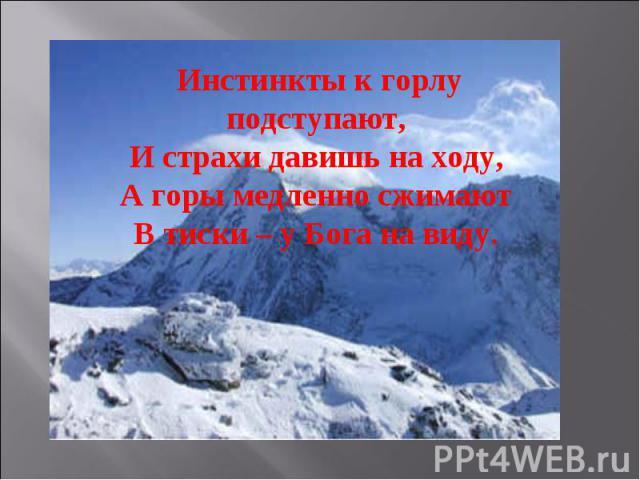Инстинкты к горлу подступают,И страхи давишь на ходу,А горы медленно сжимаютВ тиски – у Бога на виду.
