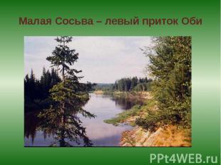 Малая Сосьва – левый приток Оби