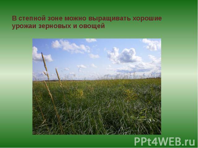 В степной зоне можно выращивать хорошие урожаи зерновых и овощей