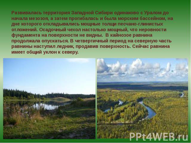 Развивалась территория Западной Сибири одинаково с Уралом до начала мезозоя, а затем прогибалась и была морским бассейном, на дне которого откладывались мощные толщи песчано-глинистых отложений. Осадочный чехол настолько мощный, что неровности фунда…