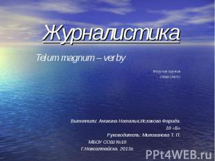 Журналистика Telum magnum – verby Могучие оружие - слово (лат.)Выполнили: Аникин