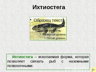Ихтиостега Ихтиостега – ископаемая форма, которая позволяет связать рыб с наземн