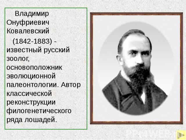 Владимир Онуфриевич Ковалевский (1842-1883) - известный русский зоолог, основоположник эволюционной палеонтологии. Автор классической реконструкции филогенетического ряда лошадей.