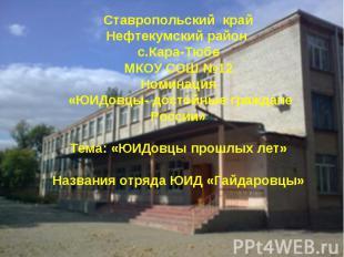 Ставропольский крайНефтекумский район с.Кара-ТюбеМКОУ СОШ №12Номинация «ЮИДовцы-