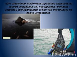 *22% известных рыболовных районов океана были совсем истощены или перегружены из