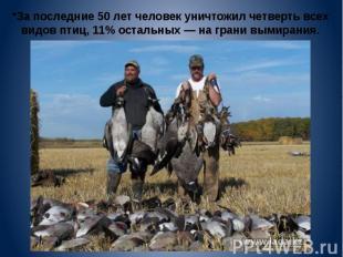 *За последние 50 лет человек уничтожил четверть всех видов птиц, 11% остальных —