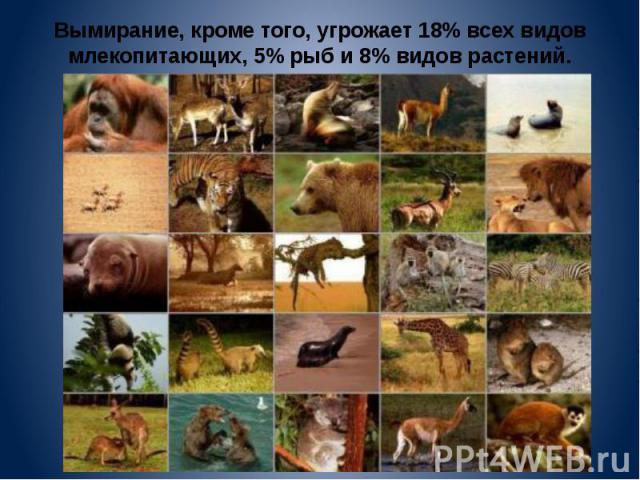 Вымирание, кроме того, угрожает 18% всех видов млекопитающих, 5% рыб и 8% видов растений.