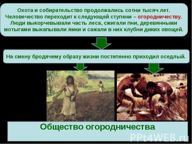 Охота и собирательство продолжались сотни тысяч лет. Человечество переходит к следующей ступени – огородничеству.Люди выкорчевывали часть леса, сжигали пни, деревянными мотыгами выкапывали ямки и сажали в них клубни диких овощей.На смену бродячему о…
