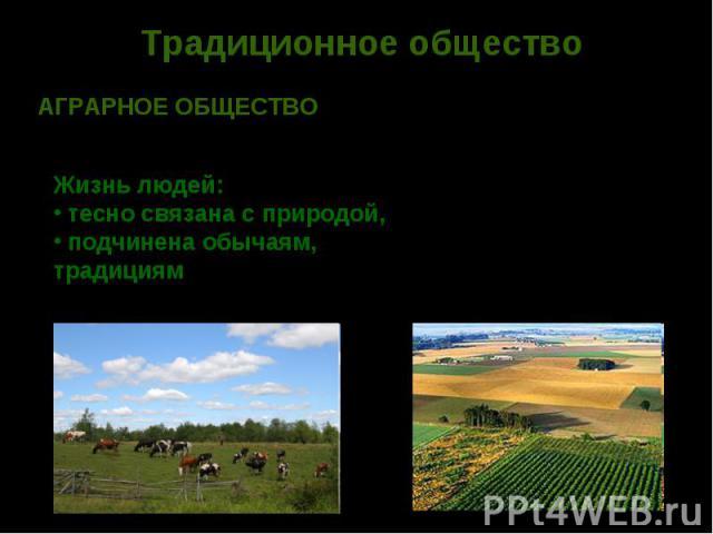 Традиционное обществоАГРАРНОЕ ОБЩЕСТВО – ступень в развитии общества, в котором преобладает сельское хозяйствоЖизнь людей: тесно связана с природой, подчинена обычаям, традициям