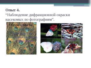 """Опыт 4.""""Наблюдение дифракционной окраски насекомых по фотографиям""""."""