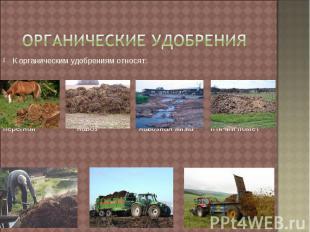 Органические удобрения К органическим удобрениям относят: перегной навоз навозна
