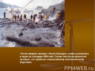 После аварии танкера «Эксон Вальдес» нефть разлилась в море на площади 4800 км2.