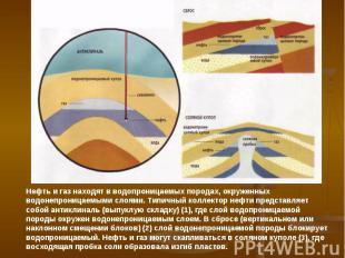 Нефть и газ находят в водопроницаемых породах, окруженных водонепроницаемыми сло
