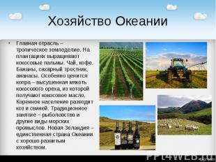 Хозяйство Океании Главная отрасль – тропическое земледелие. На плантациях выращи