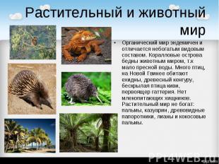 Растительный и животный мир Органический мир эндемичен и отличается небогатым ви