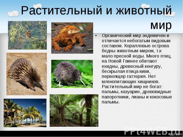 Растительный и животный мир Органический мир эндемичен и отличается небогатым видовым составом. Коралловые острова бедны животным миром, т.к мало пресной воды. Много птиц, на Новой Гвинее обитают ехидны, древесный кенгуру, бескрылая птица киви, перв…