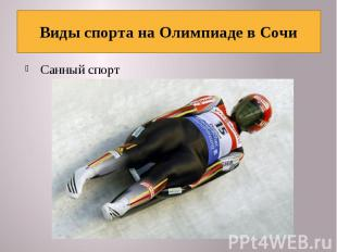 Виды спорта на Олимпиаде в Сочи Санный спорт